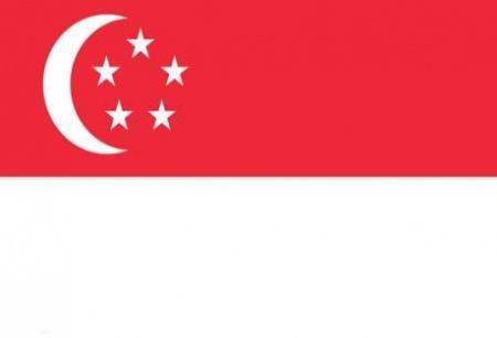 新加坡-个人旅游签证(35天)